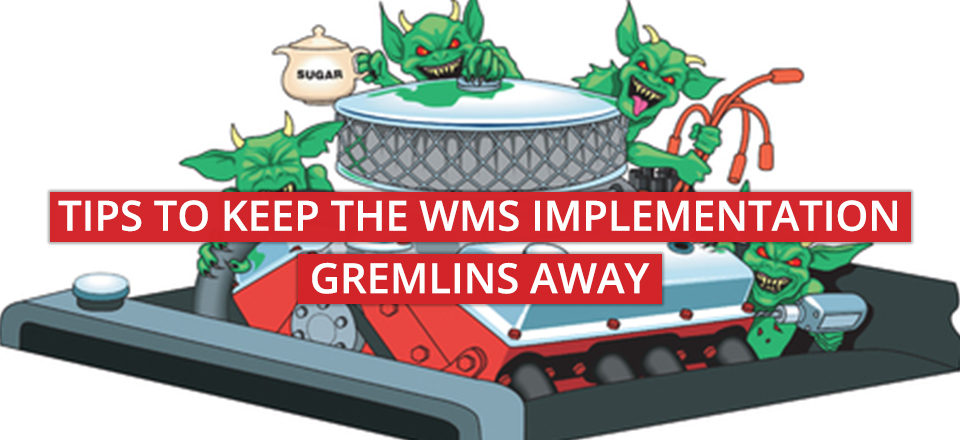 6 Tips To Keep the WMS Implementation Gremlins Away