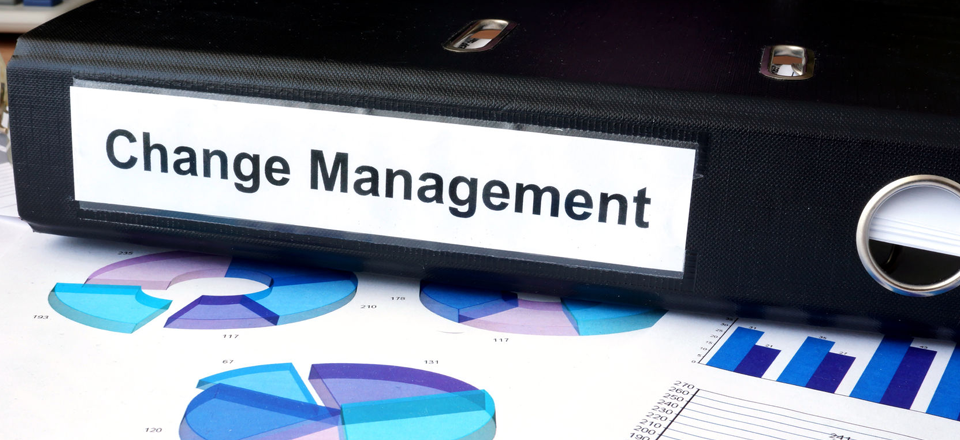 What Every Supply Chain Executive Should Know About Change Management